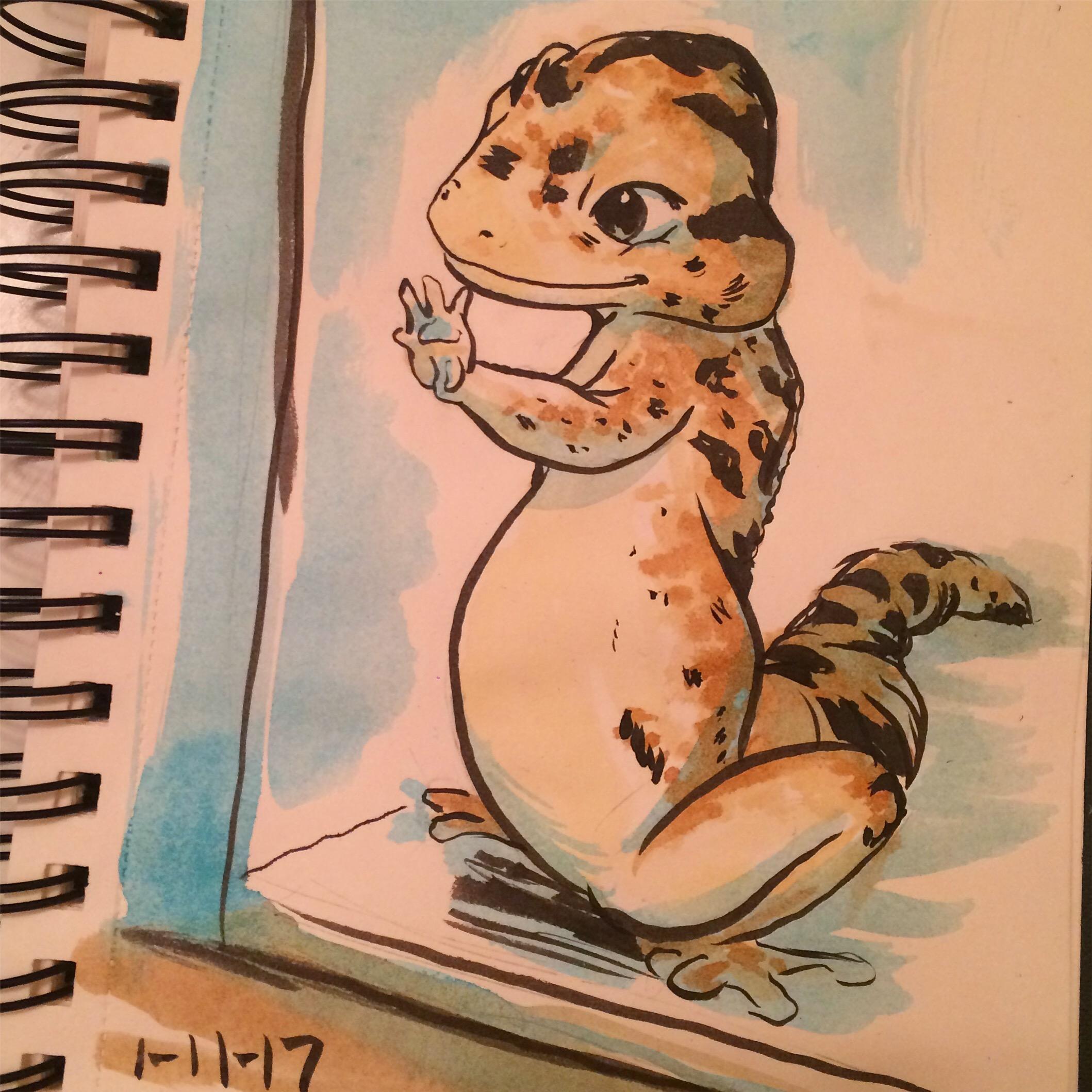 daily draw leopard gecko
